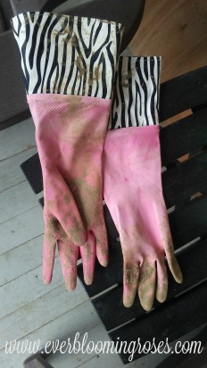 pinkdirtygloves.web