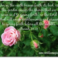 Sweet Drift.isaiah61.11.web