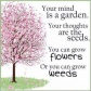 your-mind-is-a-gardenyour-thoughts-are-the-seedsyou-can-grow-flowers-or-you-can-grow-weeds-life-quote