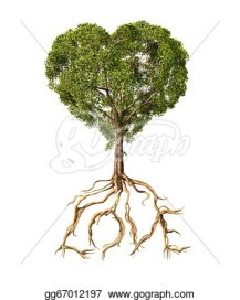 tree-with-foliage-with-the-shape-of-a-heart-and-roots-as-text-love-on-white-background_gg67012197
