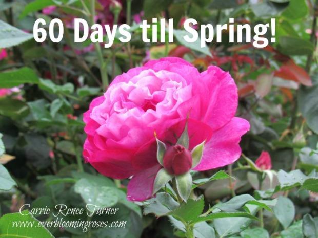 60-days-till-spring