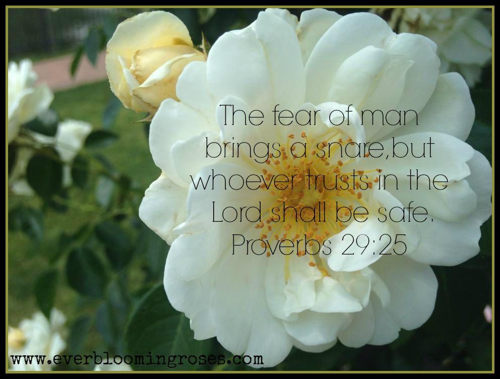 Proverbs29.25