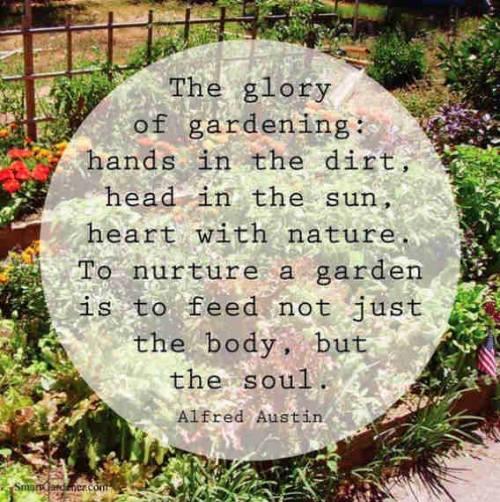 Alfred-Austin-Garden-Quote.jpg