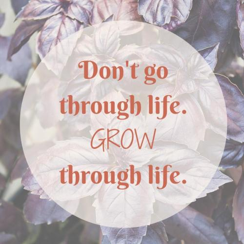 Grow-Through-Life-Quote