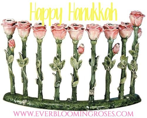 pink rose menorah