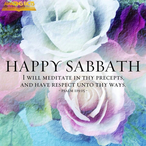 Happy Sabbath – Ever-Blooming Roses