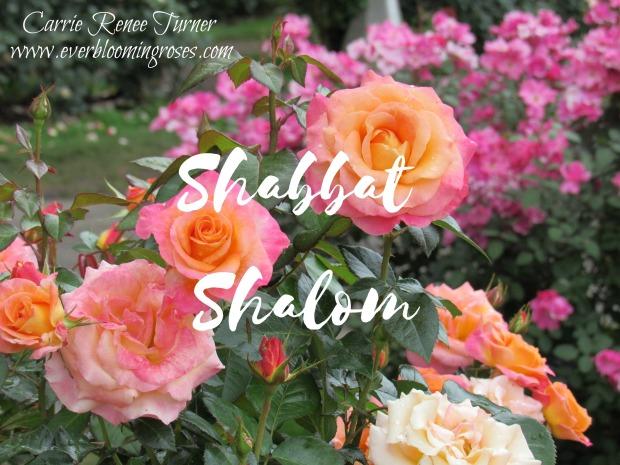 ShabbatShalomDaybreaker